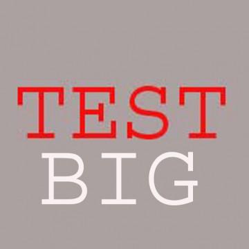 test-big