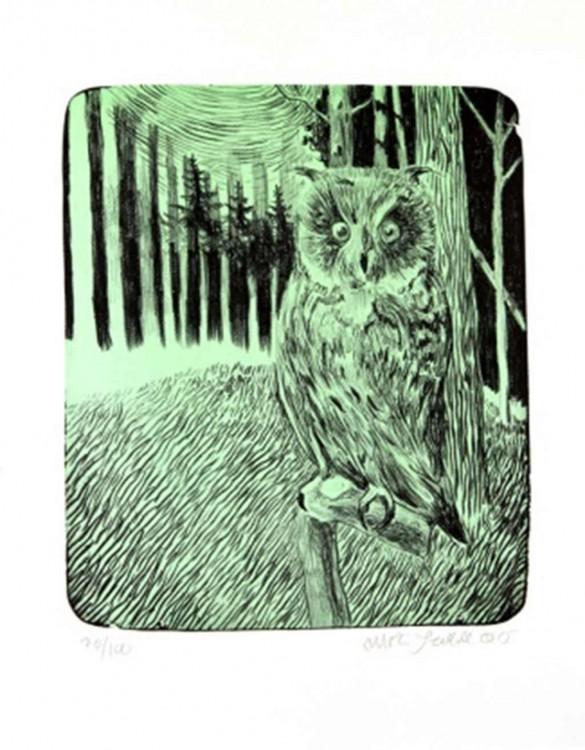 mortenSchelde_green_owl