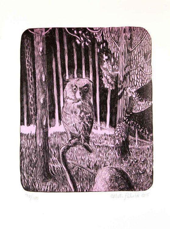 mortenSchelde_pink_owl